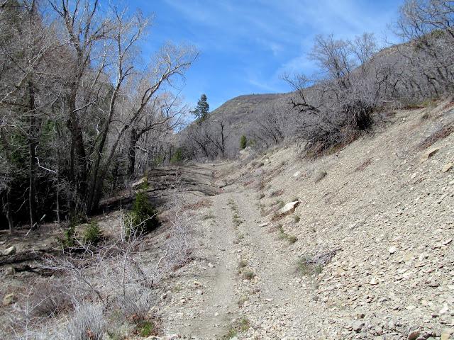 Ford Creek road