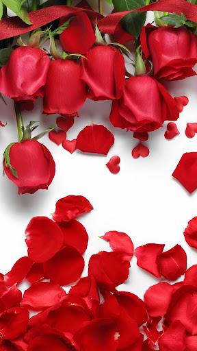 Rose Wallpaper, Floral, Flower Background: Rosely  screenshots 2