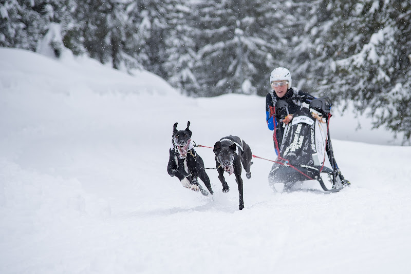 Sport a Dicembre ! di Claudio Tenca
