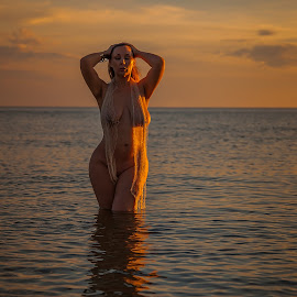 The Sun Rises by Brian Brown - Uncategorized All Uncategorized ( sand, curves, netting, ocean, beauty, goddess, beach, wet, nude, sea )