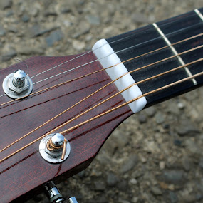 guitar strings by Lina Turoci - Artistic Objects Musical Instruments ( frets, neck, string, nut, guitar, tuning pegs, fingerboard )