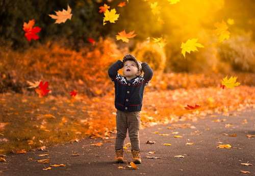 Autumn is here.... by Piotr Owczarzak - Babies & Children Children Candids ( park cute, england, london, colors, leaves, boy,  )