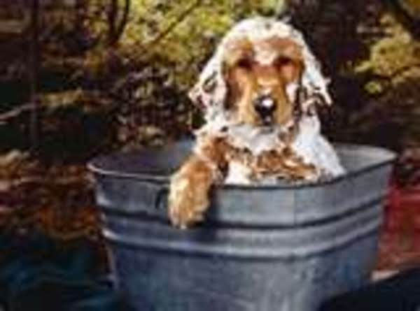Easy Tea Tree Shampoo For Dogs/goats Recipe