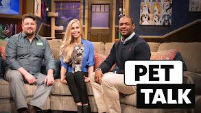 Pet Talk thumbnail