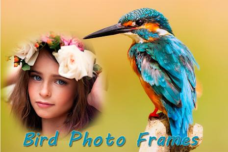 Cool Lovely Bird Photo Frames - náhled