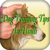 Dog Training Tips in Hindi