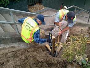 Photo: San Francisco Department of Public Works (DPW) partners begin installing erosion-control barriers near top of Hidden Garden Steps site (16th Avenue, between Kirkham & Lawton streets, in San Francisco's Inner Sunset District) July 5, 2013. For more information about the Hidden Garden Steps project, please visit http://hiddengardensteps.org and/or follow us on Twitter (@gardensteps), Facebook (Hidden Garden Steps), and Google+.