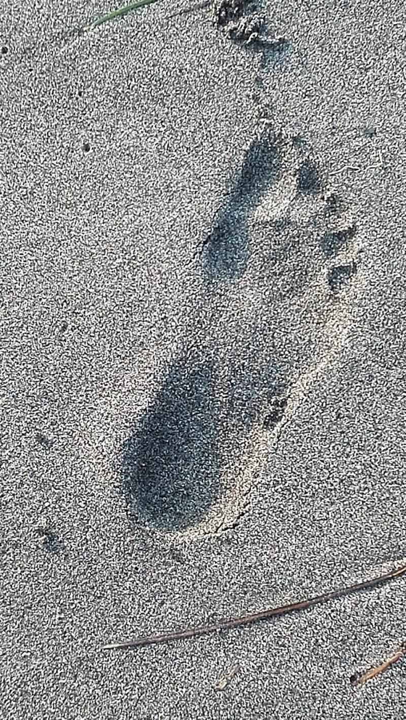 Orme di sabbia di SaScia67