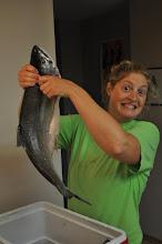 Photo: Fresh Coho salmon!