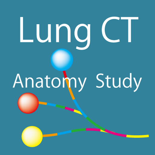 Lung CT Anatomy STUDY