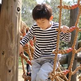 平和の森公園(大田区)