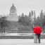 Eloping in the Rain by Bethany McGregor - Digital Art People ( lesbian, washington, girls, red, same sex, swantown inn, wedding, capital lake, couple, elopement, navy, gray, olympia,  )