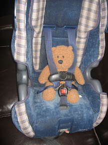 Teddy Bear strapped into car seat