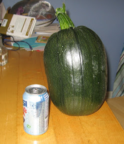 Our runaway pumpkin
