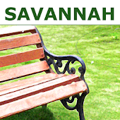 Savannah Experiences