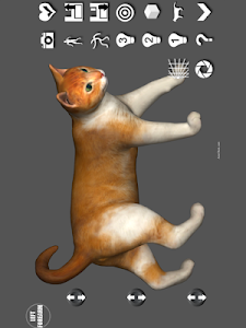 Cat Pose Tool 3D screenshot 0