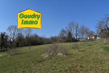 terrain à Vaux-sous-Aubigny (52)