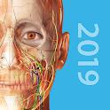 Human Anatomy Atlas 2019:Complete 3D Human Body icon