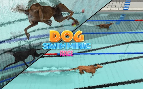 dog swimming pool race crazy animals water game screenshot thumbnail - Crazy Swimming Pools
