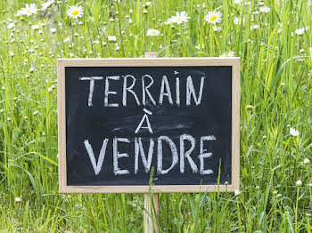 terrain à Laroche-Saint-Cydroine (89)
