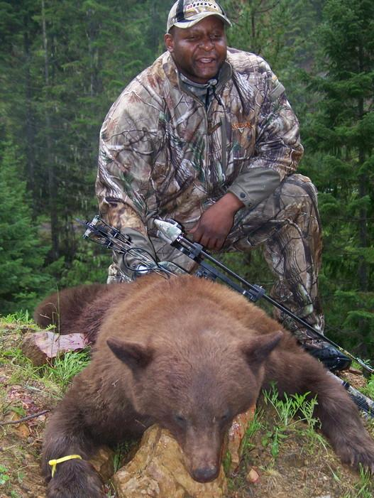 bow cinnamon phase bear