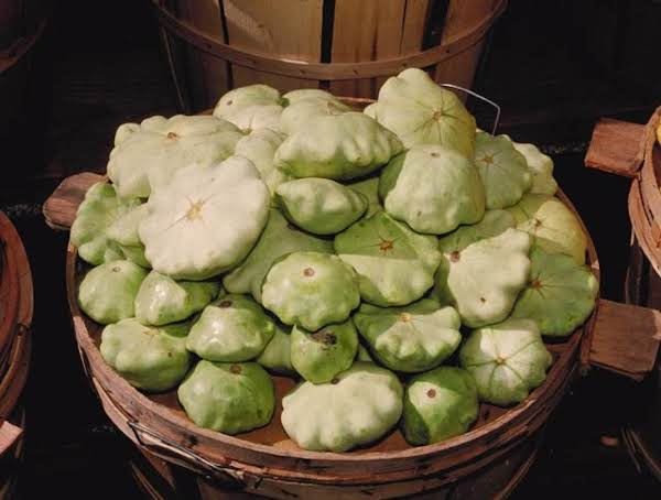 Internet Picture Of Patty Pan Squash