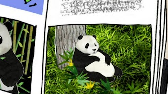 I am Going to Save a Panda