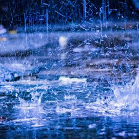 splash by Empty Deebee - Nature Up Close Water