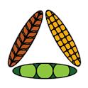 GrainBridge icon