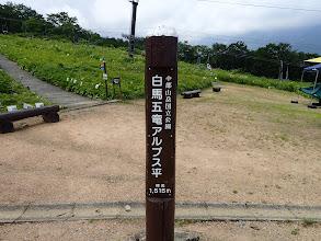 アルプス平の標識