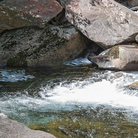 Bosco Gurin, Ticino, Switzerland by Serguei Ouklonski - Nature Up Close Water ( rock - object, boulder, color, rapid, bright, tourism, scenic, freshness, sun, summer, scene, rock, stream - flowing water, stream, season, sunny, day, flow, scenics, smooth, no person, travel destinations, fair weather, motion, rapids, nature, switzerland, wet, clear, beauty in nature, water, stone, close-up, environment, sunlight, outdoors, ticino, light, valley, tranquility, river, travel, splash, wild, no people, landscape, nature landscape )