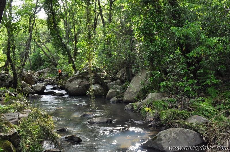 La Trocha - Rio de la Miel