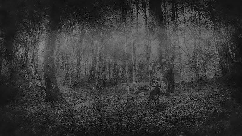 The mist di Pasquale Russo