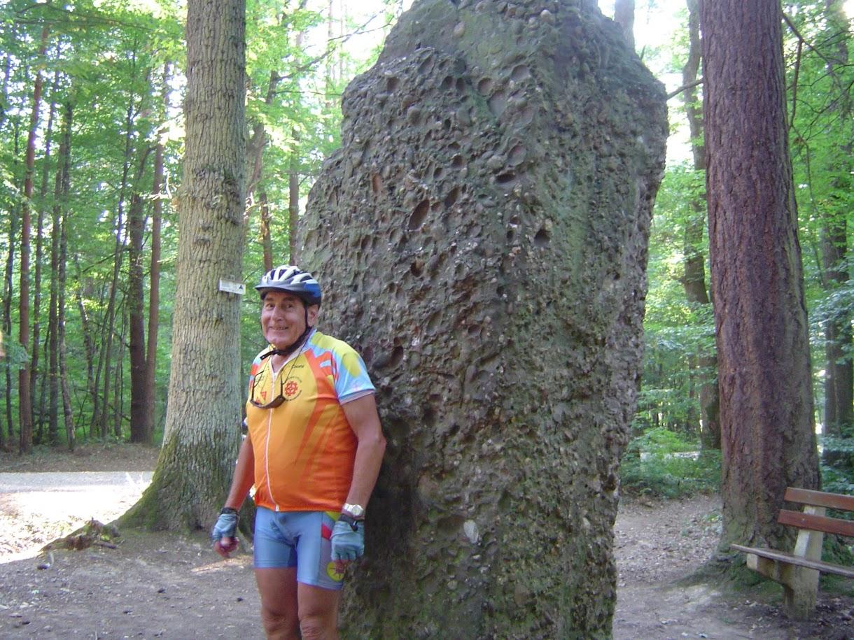 Le menhir du Langenstein