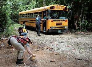 Photo: Kuljetus sademetsäpolun alkuun vanhalla amerikkalaisella koulubussilla, joka etenkin amerikkalaisten turistien mielestä oli hauskaa (Pirkko kuvaa muurahaisia)