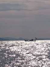 Photo: ん、 あの船は!?