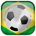 World Cup 2014 Flags Live Wallpaper icon