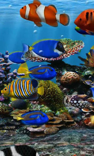 Aquarium 1 live wallpaper