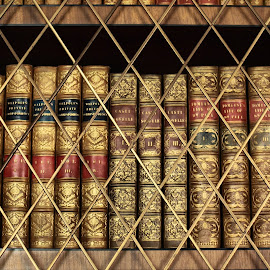 old books by Sue Rickhuss - Artistic Objects Antiques