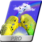 Parrots 3D Live Wallpaper Love Birds PRO Android APK Download Free By ARION