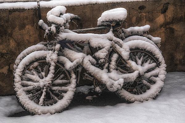 Le bici di paolo1954