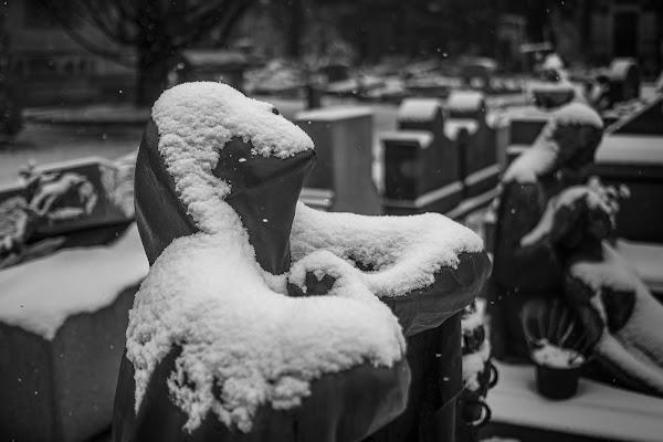 Il calore della neve di wallyci