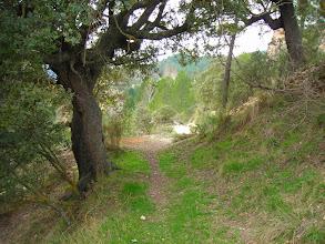 Photo: Camino a la Era de Arriba