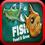 Feed The Fish & Grow