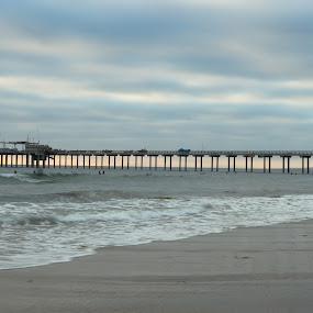 Scripps Pier, Sandiego by Srivastav Reddy - Buildings & Architecture Bridges & Suspended Structures