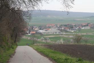 Photo: Stúpanie na východné úbočie Spitzerbergu (vzadu Königswarte)