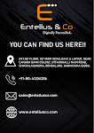 Entellus & co | Best Digital Marketing Company in Bangalore