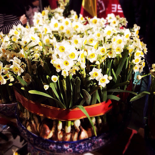 celebrations, chinese new year, dragon dance, festival, flowers, fruits, lion dance, traditions, hong kong, 香港, 新春節慶,