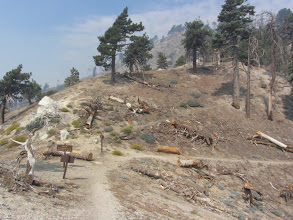 Photo: 10:30 - Windy Gap (7588') (2.2 miles from Mt. Hawkins). Looking west on PCT