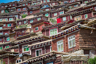 Photo: Sturdy huts at the family section of Larung Gar.